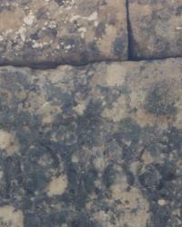 Inscripción en Piedra de 864